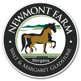 Newmont Farm Morgans